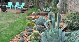 23 Arizona Backyard Ideas On A Budget