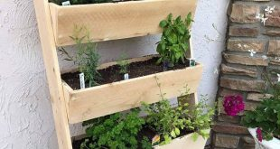 5' Vertical Cedar Ladder Planter