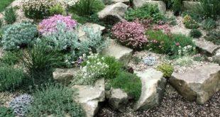 Create a Rock Garden: Tips for Success