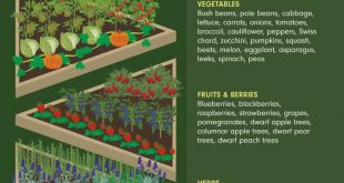 Creating Your Personal Garden Style: From Shakespearean Whimsy to Rustic Potager