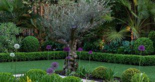 Garden Design apps to Create Garden Plans
