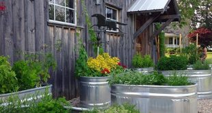 Restaurants and home cooking / kitchen gardens take note: This idea would make f...