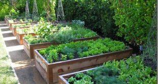 The Ultimate Kitchen Garden, Courtesy of a California Master