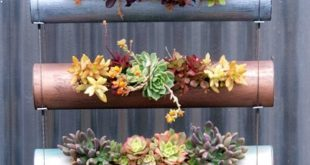 Use spray painted PVC pipes to make a vertical hanging succulent garden. This wo...