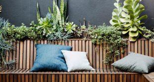 outdoor entertaining, patio, succulent garden, bench seating