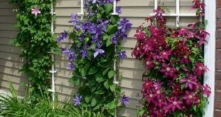 30+ Handsome Diy Examples How To Make Lovely Vertical Garden