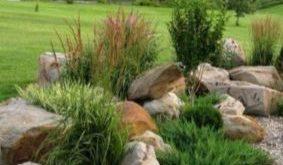 50 Outstanding Front Yard Rock Garden Ideas