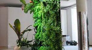 Patrick Blanc's Vertical Garden for the HomeParis, France