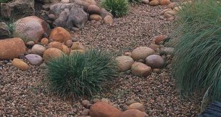 Rock garden Archives - Page 3 of 11 - Great Yard Ideas