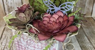 Succulent Garden Box. A great idea for Mother's Day, Birthday, Easter, Get...