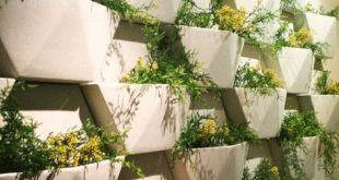 Wonderful Wallflowers: Vertical Gardening Supplies for Small Spaces