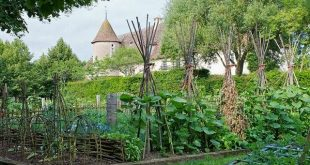 the French potager - and why I'll never make the grade!