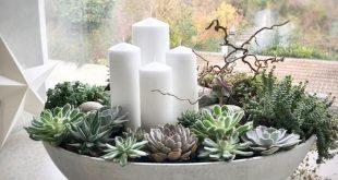 Adventskranz Betonschale mit Sukkulenten und 4 weissen Kerzen... Weihnachtsdeko ...