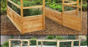 Einfache Bio-Garten-Tipps von den Profis