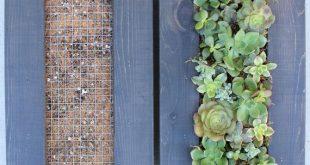 Entwerfen Sie Ihren eigenen lebenden Wandbehang Sukkulentengarten. Dies ist ein ...