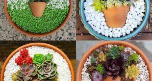 60+ Charming Succulent Indoor Garden Ideas 2019 #succulentgarden #succulentindoo...