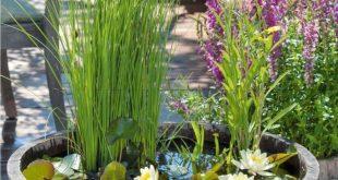 Balkon Ideen selber Machen: Ein Mini-Teich im Topf