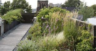 Dachterrasse begrünen und gestalten – Praktischer Bepflanzungsplan für den perfekten Dachgarten