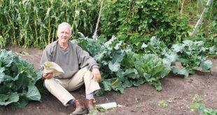 Homemade Organic Fertilizer Recipe - Food Gardens - Natural Home & Garden