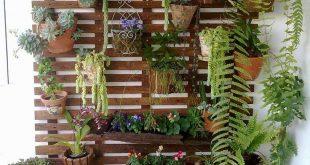 Outdoor Succulent Garden Ideas 4 (Outdoor Succulent Garden Ideas 4) design ideas and photos