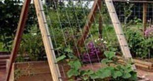 Schöne 38 aufregende Ideen, um Gemüse in Ihrem Garten anzubauen. Mehr unter homystyle.com