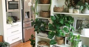 dream house kitchen plant wall open shelf shelving stainless steel wood floor wh... - #dream...