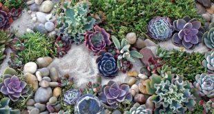 ✔ 60 cute fairy garden design ideas that you must see 9