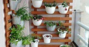 10 Top Best Trending Balcony Vertical Gardens