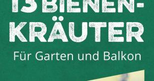 13 bienenfreundliche Kräuter für Garten und Balkon