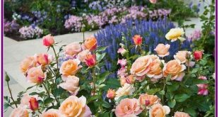 28+ Flowers Garden Ideas for Backyards that make your Home Fresh