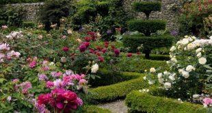 30+ Gorgeous Garden Path Design Ideas For Your Garden