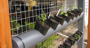 33 Best DIY Vertical Garden with PVC Pipes For Small Home Yard Solutions