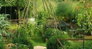 47 Stylish Vegetable Garden Design Ideas You Must Try
