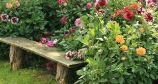 50 Rustic Backyard Garden Decorations 22