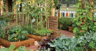 55 Best Backyard Vegetable Garden Designs Ideas