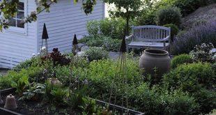 Black Beauties: 10 Film Noir Flowers for a Glamorous Garden
