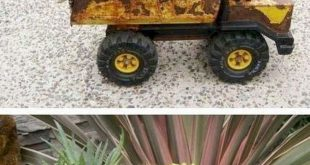 Container Garden Ideas With Succulents 1 (Container Garden Ideas With Succulents 1) design ideas and photos