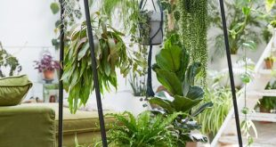 Diese brillanten vertikalen Gartenideen lassen Sie vor Neid erblassen - Melissa Ortega