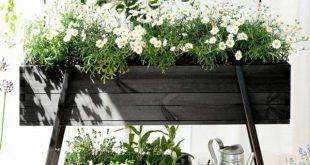 Eleganter Blumenkasten verschönert den Außenbereich