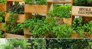 Faça o seu próprio jardim vertical