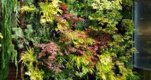 Jardim vertical - Você pode ter o seu