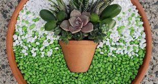 Miniatur-Sukkulentengärten in einem Topf