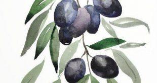 Olive branch original watercolor illustration food original Decor black olive garden gifts for her kitchen Leaves Botanical Illustration by MaryArtStu
