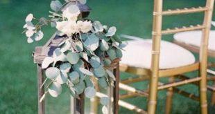 Silver Dollar Eucalyptus - 1 lb. Fresh Organic Sprigs - Home Decor Rustic Farmhouse Style Bath Spa S