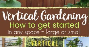 Vertical Vegetables - Unique DIY Ideas for Any Space