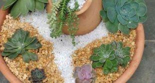 Wunderschöner Mini Steingarten im Topf: Ein paar Kieselsteine, ein Lieblingssteingarten und ein Blumentopf - 17 Inspirationen für die Wohnung und den Garten! - Maria Lagos