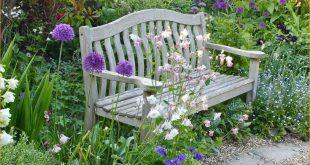 pretty cottage garden border ideas 12